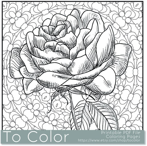 Items Similar To Printable Rose Coloring Page For Adults