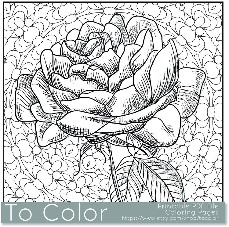 Printable Rose Coloring Page for Adults PDF JPG Instant by ...