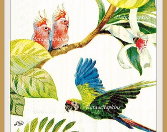 PAPER napkins for DECOUPAGE - PARROT Green and White