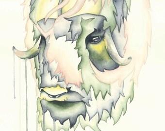 Watercolour Muskox Print