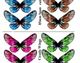 Fantasy Cicada set 4 Designs