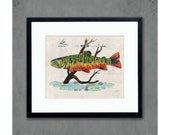 Brook Trout Fly Fisherman's Art Print