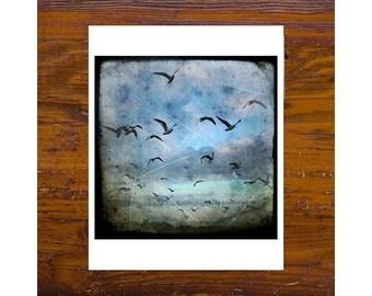 8x8 Print [JCP-002] - Seagulls