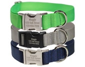 Personalized Dog Collar - Engraved Buckle Dog Collar