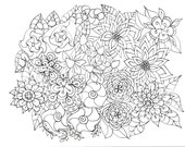 Flower Garden Coloring Pages All Ages Zentangle Inspired