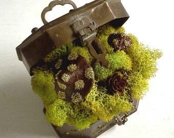 Steampunk Fairy Garden Cricket Box, Spring Easter Reindeer Moss Brass Copper Trinket Tabletop Miniature Brown German Glass Glitter Toadstool