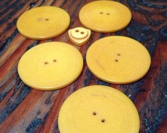 Vintage butterscotch bakelite buttons