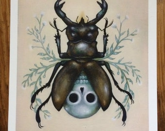 Secret Order of Coleoptera Print