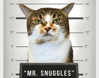 NEW, Custom Pet Portrait, Pet Shaming, Pet Mugshot, Pet Line-up, Funny Gift, Fast Gift, HILARIOUS