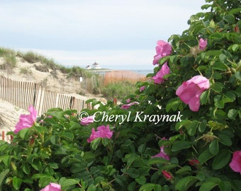 Beach Roses with Lighthouse - Rhode Island Photograph - 16 x 20 Unframed Print