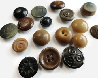 Vegetable Ivory Antique Buttons - 17 Vintage Early 1900s