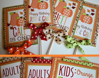 Fall Pumpkin Birthday Party Decorations Package Fully Assembled