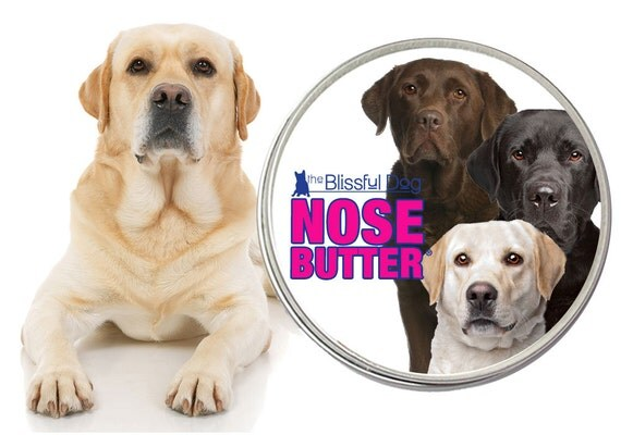 Labrador retriever original nose butter 174 handcrafted salve for dry