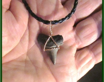 Mako Shark tooth on Leather necklace