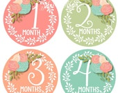 Baby Girl Month Stickers, Monthly Baby Stickers, Photo Prop, Floral Roses Newborn Bodysuit, Milestone Stickers