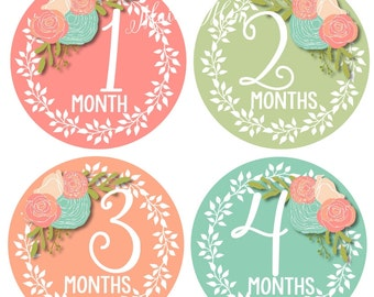 FREE GIFT, Baby Girl Month Stickers, Monthly Baby Stickers, Photo Prop, Floral Roses Newborn Bodysuit, Milestone Stickers