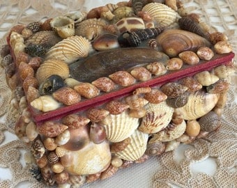 Vintage Seashell Jewelry Trinket Box
