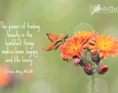 Humble things - art, photography, typography, orange butterfly, orange flower, inspirational quote, Louisa may alcott, quotes, nature 11X14