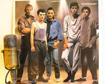 """ON SALE The Boomtown Rats (with Bob Geldof) Vinyl Record Album LP Vintage 1980s Irish New Wave Rock  """"In The Long Grass"""" (1985 Cbs w/""""A Hold"""