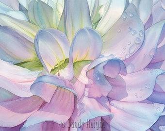 Framed Giclee of watercolor painting- After the Shower, dahlia, flower, floral, print, art, gift, purple, blue, garden, gardener, botanical