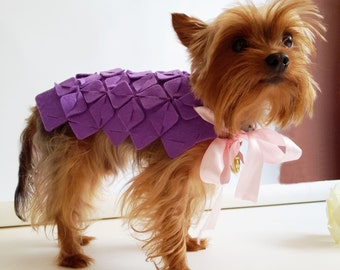 Diy Dog Coat Costume