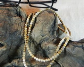 """Brown picture jasper eyeglass holder 30"""" long ombre graduated color lanyard semiprecious stone jewelry in a gift bag 1373"""