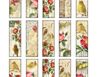 birds 1 x 3 inch tiles microscope slide images Digital Collage Sheet diy jpg roses flowers Printable Download pendant altered art jewelry