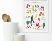 Chili Pepper Kitchen Art, 8x11 Watercolor Art - Culinary Kitchen Decor / Food Poster
