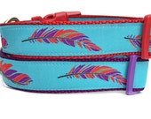 Feather Dog Collar / Tribal Dog Collar / Turquoise Dog Collar / Aztec Dog Collar / Blue Dog Collar / Nylon Webbing Dog Collar /