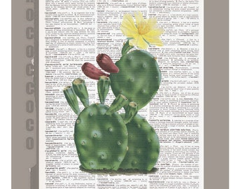 Beautiful  Blossom Cactus Flower Illustration Print on Vintage Dictionary Book page -  Kitchen decor, Botanical art, Artwork