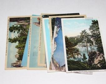 10 Vintage Custer State Park Black Hills South Dakota Postcards Used