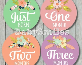 FREE GIFT Monthly Baby Stickers Baby Month Stickers Baby Girl Month Stickers Monthly Milestone Sticker Feathers Vintage Flowers Sweet Floral