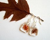 Real Autumn Oak Leaf Woodland Earrings - pressed leaves, oak leaf, leaf, autumn, fall, natural, forest, minimal, simplicity, ooak, gift