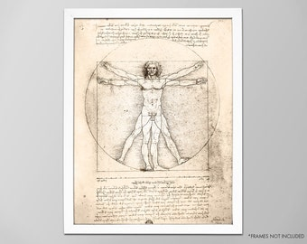 Vitruvian Man, Da Vinci Human Anatomy Art Print, Leonardo Da Vinci Drawing, Da Vinci Illustration, Medical Illustration, Da Vinci Art Print