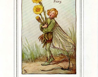 The COLT'S FOOT FAIRY Vintage Book Plate c. 1940 Original Page Book of the Flower Fairies Cicely M Barker