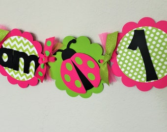 Ladybug Birthday Party High Chair Mini Banner in Pink and Green