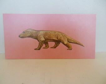 Vintage Dinosaur Flash Card Color Decor Paper Ephhemera Cynognathus 1960's (item 12)