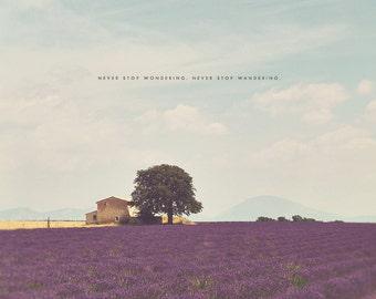 Lavender Fields, Lavender Field, Lavender Art, Lavender Print, Provence France, Provence Art, Provence Photography, Lavender Field Art
