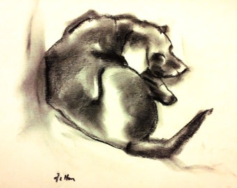 Doggie doodle #11.  Blind contour charcoal drawing of my dog.