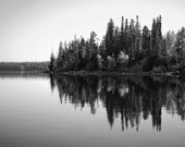 Reflections - Original Fine Art Photograph - Black and White, Landscape, Tree, Sound Wave, FREE SHIPPING