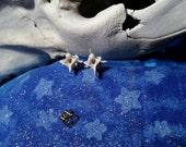 snake vertebra stud/post earrings. snake bone. real bone.