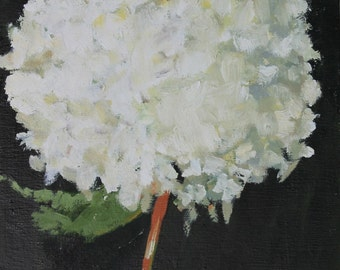 White Hydrangea Still Life Painting, Original Oil on wood panel, 10x10 inch Canadian fine art wall decor