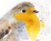 "Martinefa's Original watercolor and Ink ""Robin"""