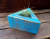 Wood Air Plant Planter // Air Plant Holder // Terrarium + Mini Air Plant // Rustic // Geometric