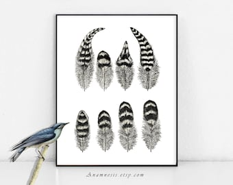 Feathers Print - POULTRY FEATHERS 1 - Instant Digital Download - printable antique illustration for framing, totes, kitchen wall decor, tags