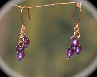 Purple Beaded Dangle Earrings, Itty Bitty Dangle Earrings, Pick Your Wire Type 14k GF, Sterling, Wine Grape Earrings,Handmade Earrings