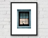 City Window with Flower, Urban, NYC: 5x7 Matted Photo