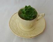 Charming Vintage Tea-Pot Planter -> Decorative Pot for Planting Flowers and Plants for Your Home or Garden