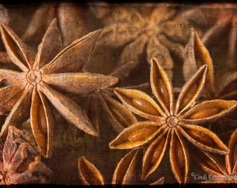 Star Anise, Photography, Food Photography, Kitchen Art