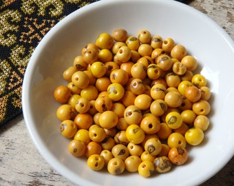 Natural acai beads in YELLOW - 100 beads, natural seed beads from the Amazon, Brazilian seed beads, nature beads, eco friendly beads